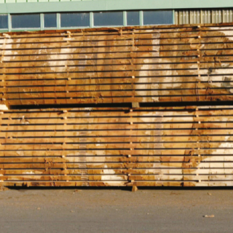 Trés gros stock plots chêne sous hangars